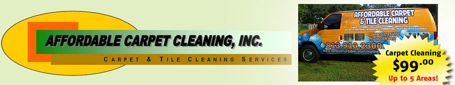 Affordable Carpet Cleaning Tampa - Logo